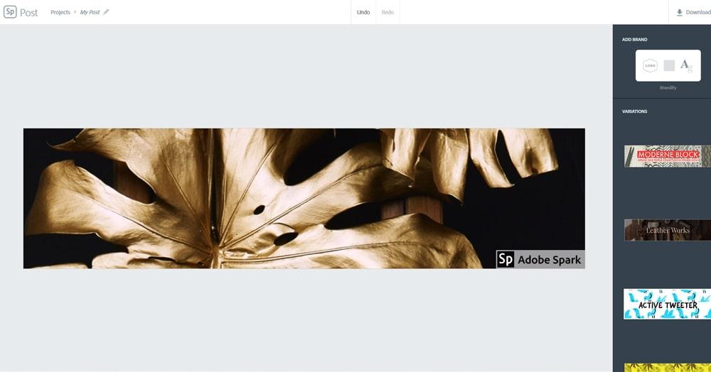Adobe Spark-min